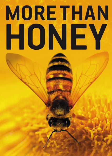 More Than Honey Stream Deutsch