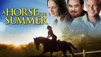 Horse for Summer