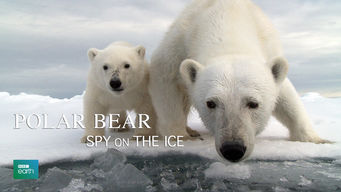 Polar Bear: Spy on the Ice