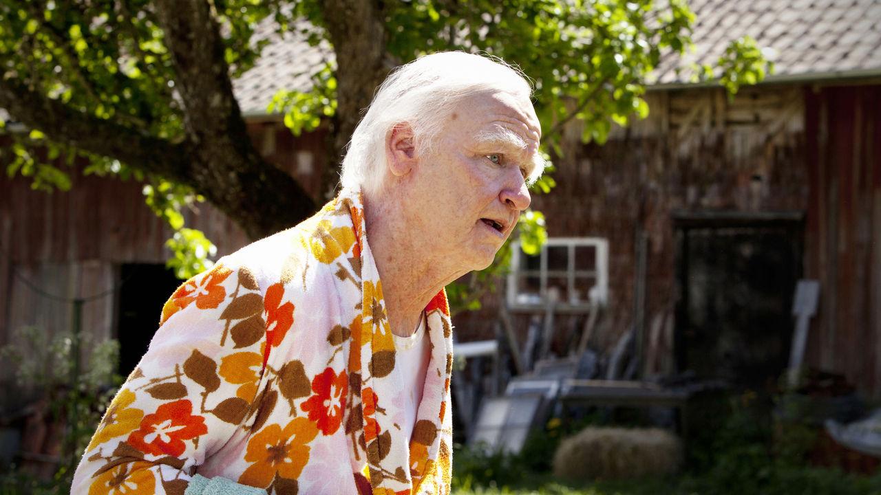 Il centenario che salt dalla finestra e scomparve scheda netflix lovers - Film il centenario che salto dalla finestra e scomparve ...