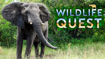 Wildlife Quest