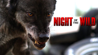 Night of the Wild