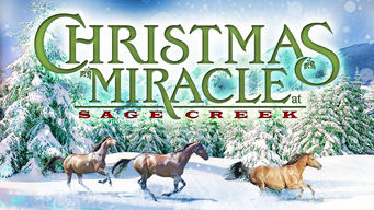 Christmas Miracle at Sage Creek