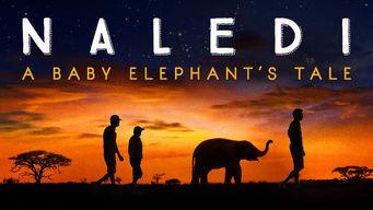 ナレディ: ある子ゾウの物語