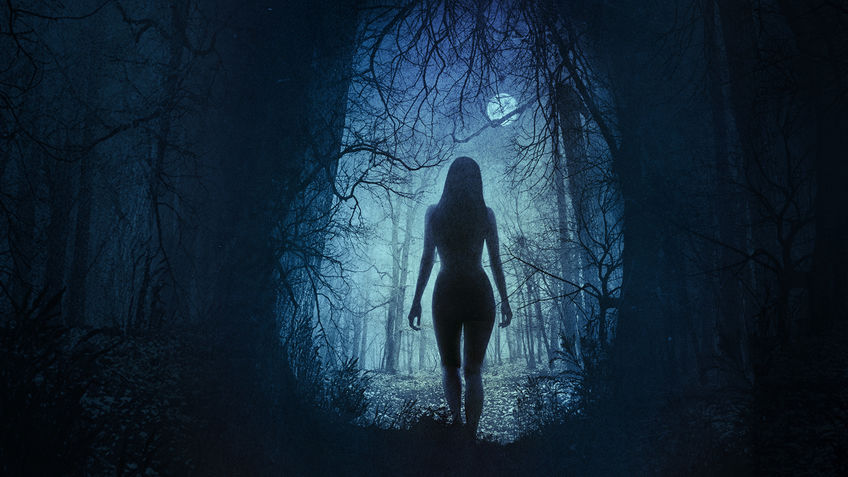The Witch - Is The Witch on Netflix - FlixList