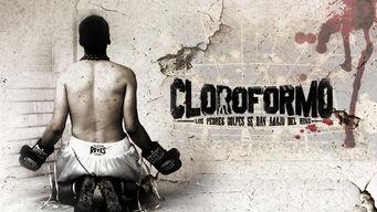 Cloroformo