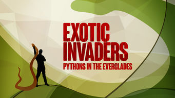 Exotic Invaders: Pythons of the Everglades on Netflix UK