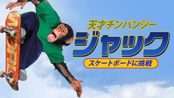 天才チンパンジー ジャック/スケートボードに挑戦