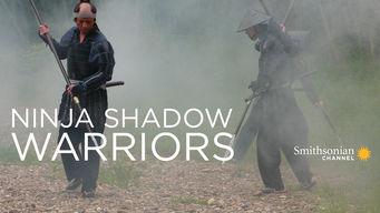 Ninja: Shadow Warriors