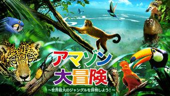 アマゾン大冒険 ~世界最大のジャングルを探検しよう!~