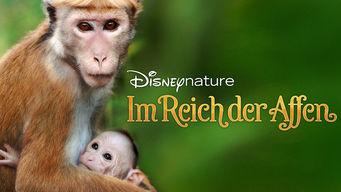 Disneynature: Im Reich der Affen