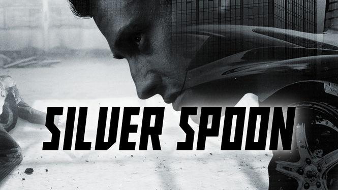 Silver Spoon on Netflix USA