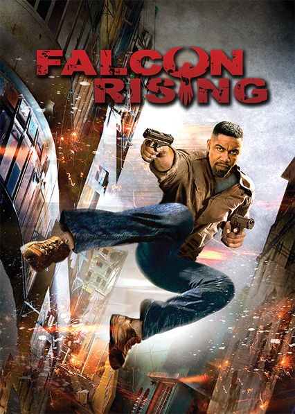 Falcon Rising on Netflix UK