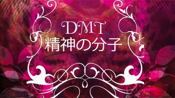 DMT: 精神の分子