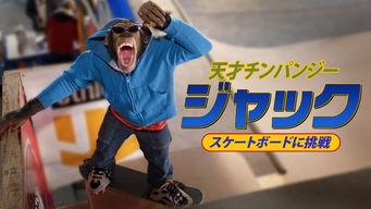 天才チンパンジー ジャック/アイスホッケーの友情