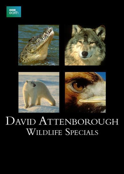 David Attenborough: Wildlife Specials