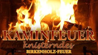 Kaminfeuer 4K: Knisterndes Birkenholz-Feuer
