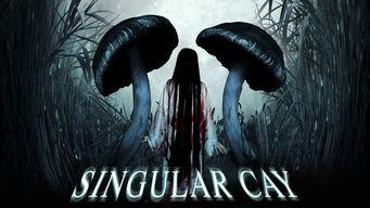 Singular Cay