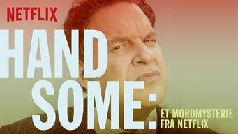 Handsome – et mordmysterie fra Netflix