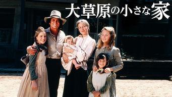 大草原の小さな家 第1シーズン