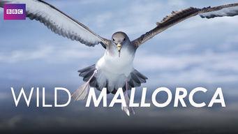 Wild Mallorca
