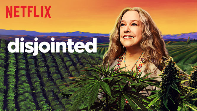 Disjointed on Netflix USA