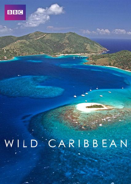 Wild Caribbean