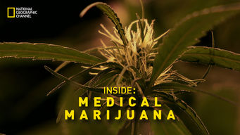 Inside Medical Marijuana