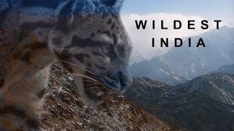 Wildest India