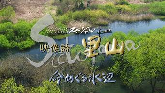 NHKスペシャル 映像詩 里山~命めぐる水辺~