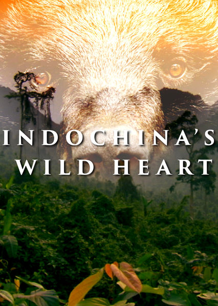 Indochina's Wild Heart