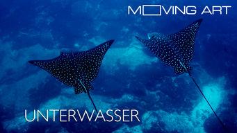 Moving Art: Unterwasser