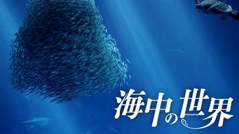 海中の世界