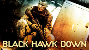 Black Hawk derribado