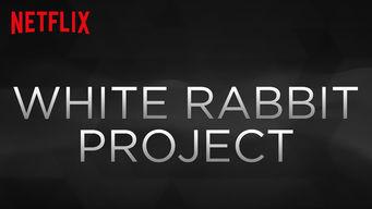 ホワイト・ラビット・プロジェクト