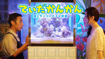 てぃだかんかん ~海とサンゴと小さな奇跡~