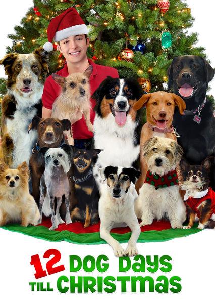 12 Dog Days Till Christmas on Netflix USA