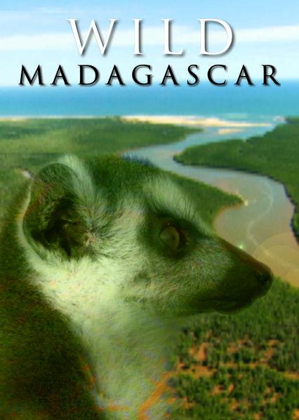Wild Madagascar on Netflix USA