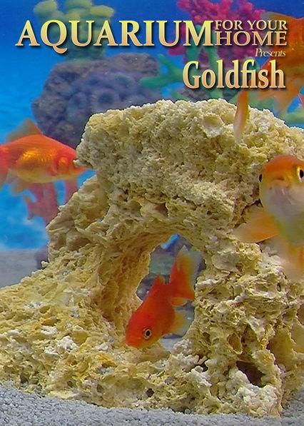 Aquarium for Your Home: Goldfish on Netflix USA