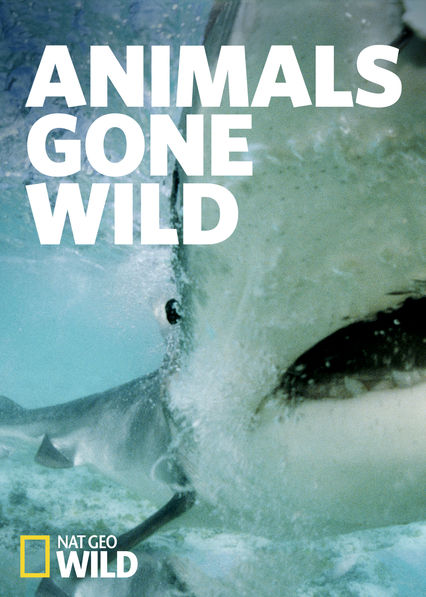 Animals Gone Wild on Netflix USA