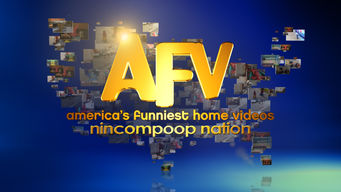 America's Funniest Home Videos: New Collection D