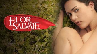 Flor Salvaje
