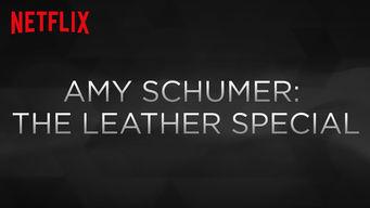 エイミー・シューマーのレザー製ですが何か?