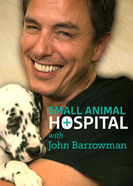 Small Animal Hospital